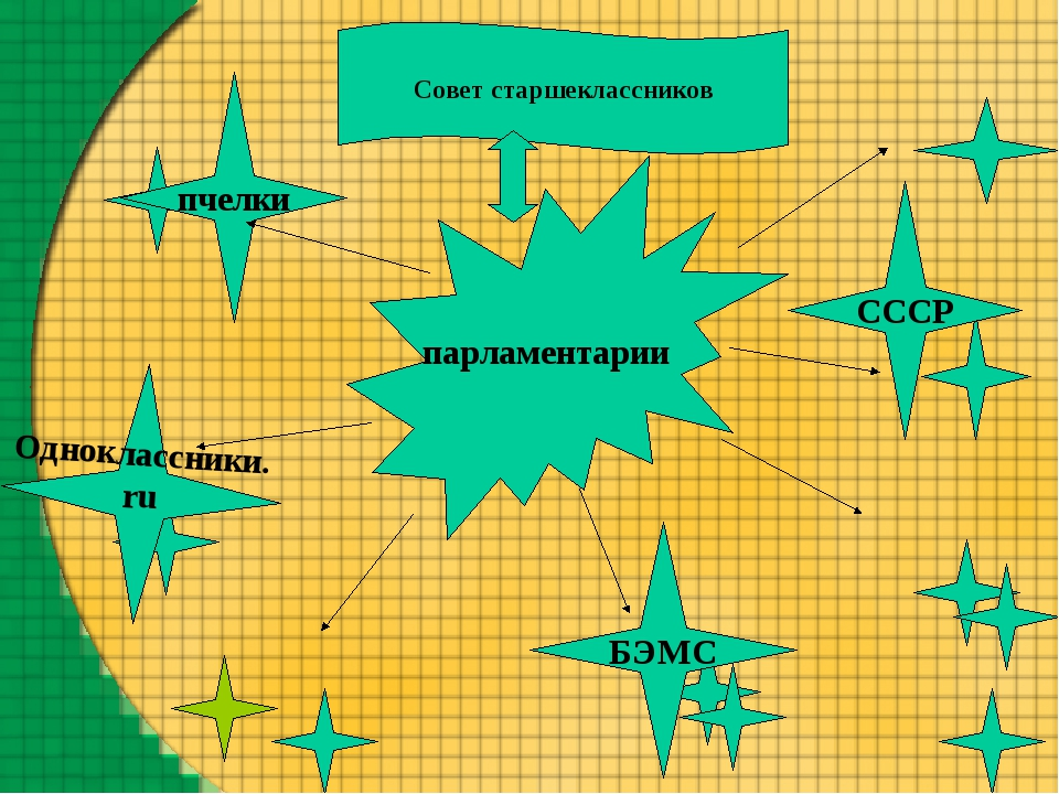парламентарии Совет старшеклассников CCCР БЭМС Одноклассники. ru пчелки