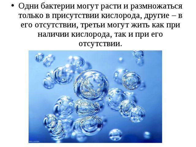 Одни бактерии могут расти и размножаться только в присутствии кислорода, друг...