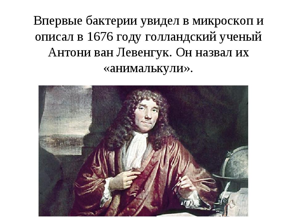 Впервые бактерии увидел в микроскоп и описал в 1676 году голландский ученый А...