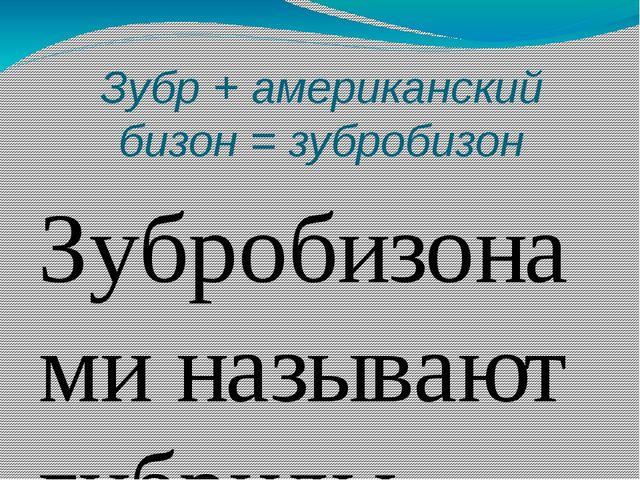Зубр + американский бизон = зубробизон Зубробизонами называют гибриды зубра и...
