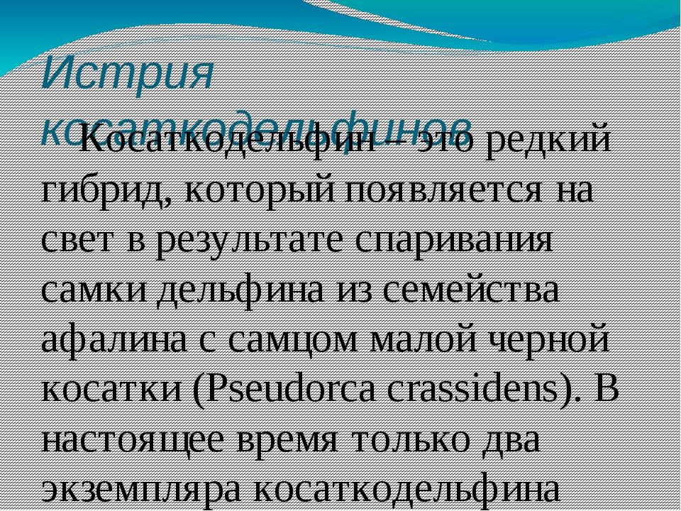 Истрия косаткодельфинов Косаткодельфин – это редкий гибрид, который появляетс...