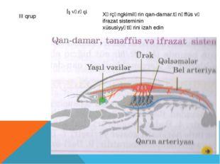 Xərçəngkimilərin qan-damar.tənəffüs və ifrazat sisteminin xüsusiyyətlərini iz