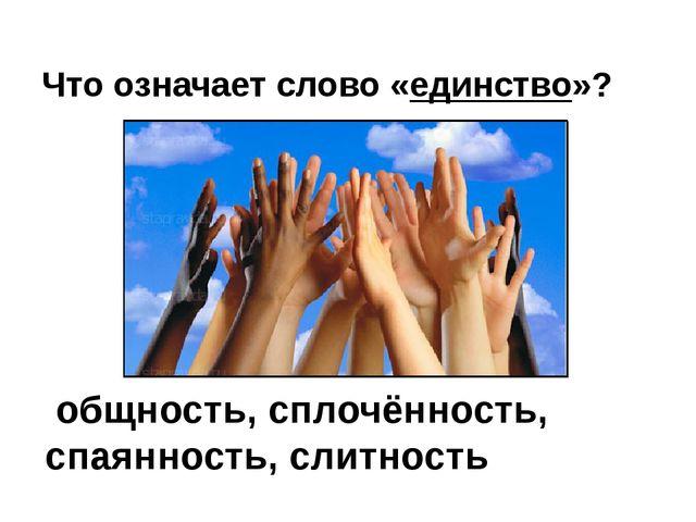 Что означает слово «единство»? общность, сплочённость, спаянность, слитность