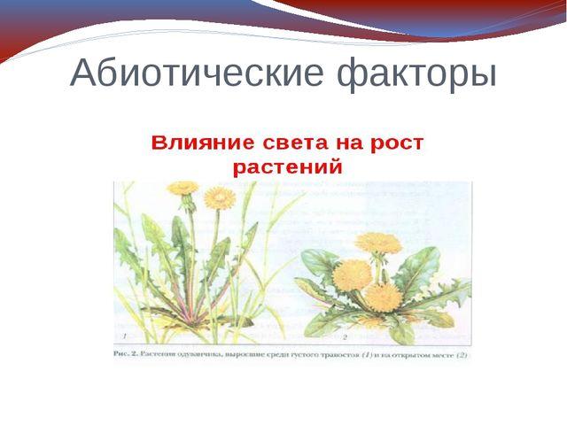 Абиотические факторы