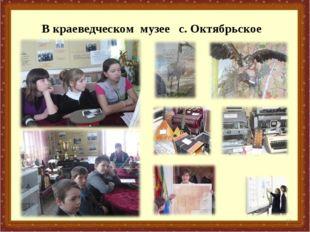 В краеведческом музее с. Октябрьское *