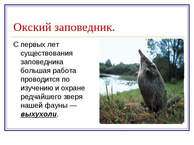 hello_html_m76bdadd1.jpg