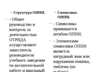 Структура ОППН. - Общее руководство и контроль за деятельностью ОТРЯДА осуще