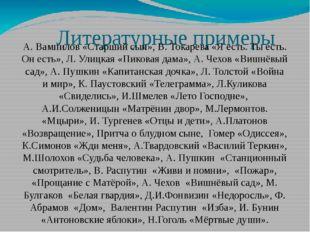 Литературные примеры А. Вампилов «Старший сын», В. Токарева «Я есть. Ты есть.