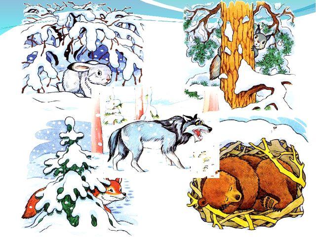 звери в зимнем лесу картинки в старшей группе видеоклипа