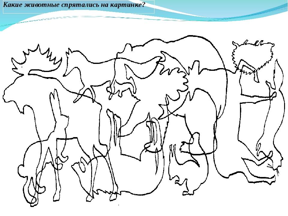 рисовать наложенные картинки животные холодных стран муниципальный район является