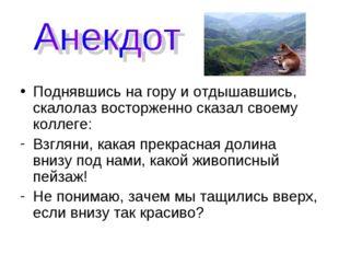 Поднявшись на гору и отдышавшись, скалолаз восторженно сказал своему коллеге: