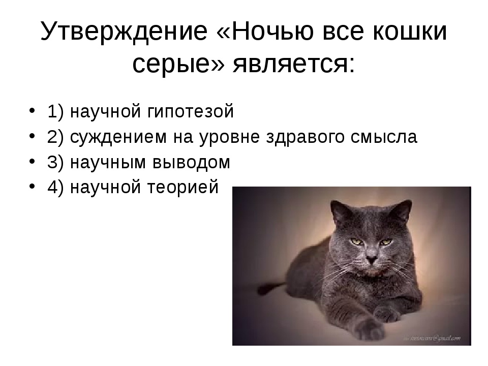 Утверждение «Ночью все кошки серые» является: 1) научной гипотезой 2) суждени...