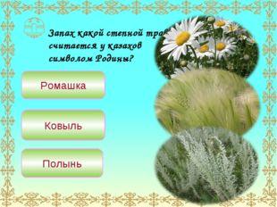 Запах какой степной травы считается у казахов символом Родины? Ромашка Ковыль