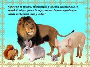 Что это за грызун, обитающий в степях Казахстана «с головой зайца, усами белк