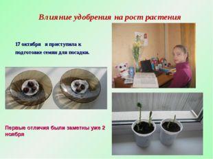 Влияние удобрения на рост растения 17 октября я приступила к подготовке семян