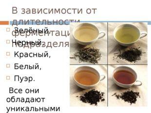 В зависимости от длительности ферментации чай подразделяют на: Зелёный, Черны