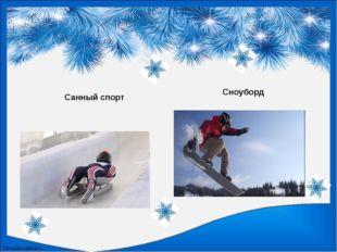 Санный спорт Сноуборд FokinaLida.75@mail.ru