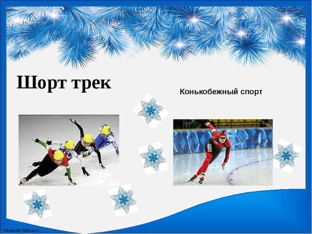 Шорт трек Конькобежный спорт FokinaLida.75@mail.ru