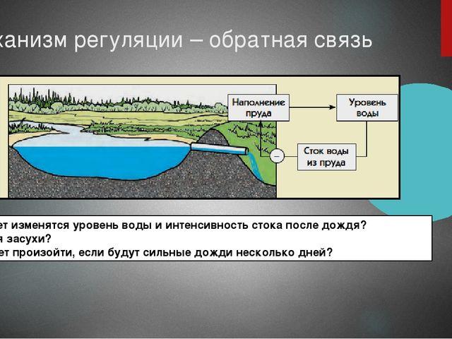 Механизм регуляции – обратная связь Как будет изменятся уровень воды и интенс...