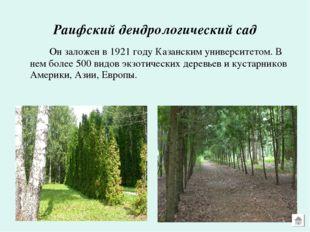Раифский дендрологический сад Он заложен в 1921 году Казанским университето