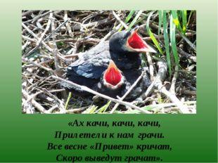 «Ах качи, качи, качи, Прилетели к нам грачи. Все весне «Привет» кричат, Скор