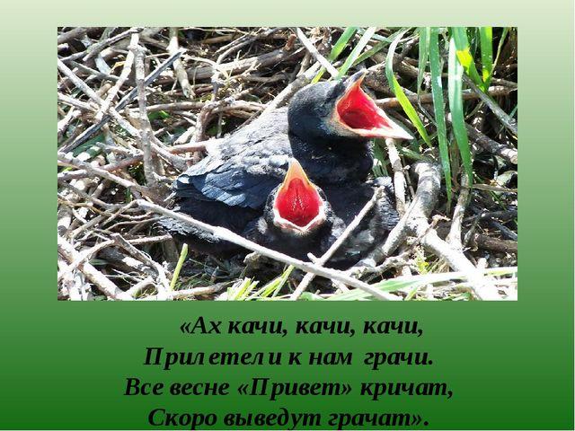 «Ах качи, качи, качи, Прилетели к нам грачи. Все весне «Привет» кричат, Скор...