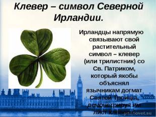 Клевер – символ Северной Ирландии. Ирландцы напрямую связывают свой раститель
