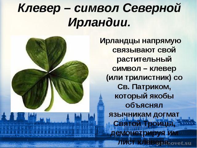 Клевер – символ Северной Ирландии. Ирландцы напрямую связывают свой раститель...
