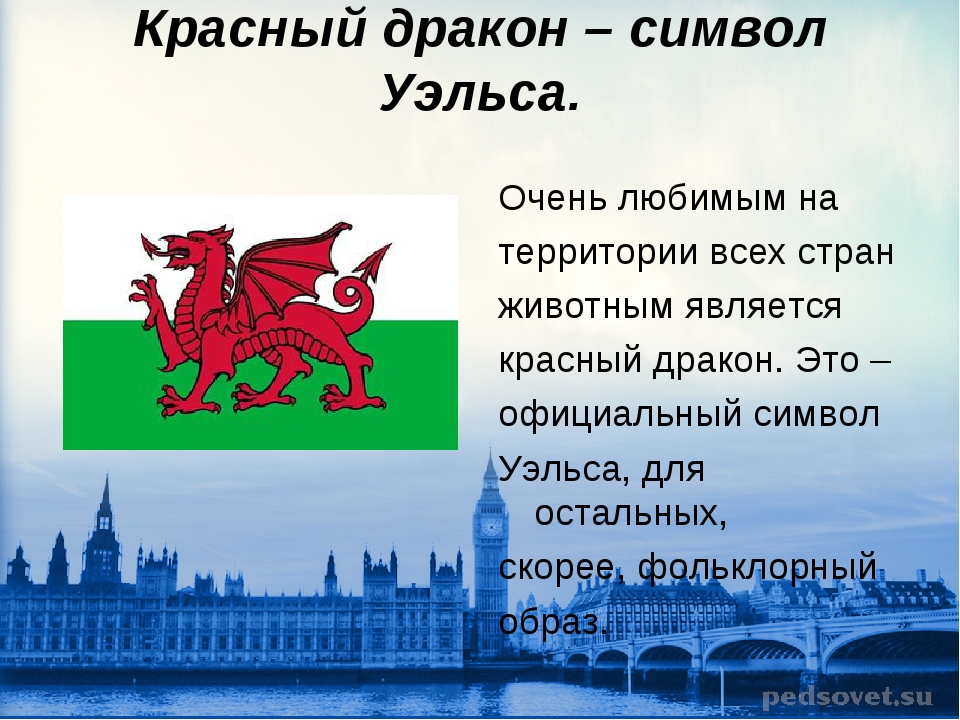 Красный дракон – символ Уэльса. Очень любимым на территории всех стран животн...