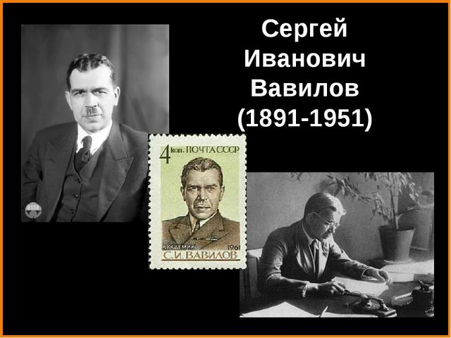 Сергей Иванович Вавилов (1891-1951)