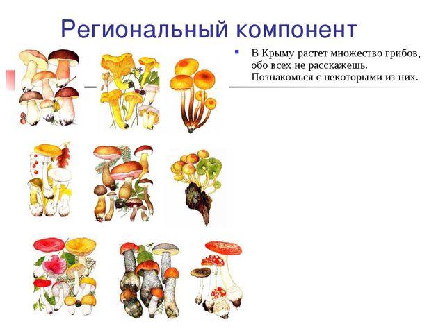 Региональный компонент В Крыму растет множество грибов, обо всех не расскажеш...