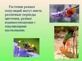 Растения разных популяций могут иметь различные периоды цветения, разные вза