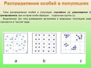 Типы распределения особей в популяции: случайное (а), равномерное (b), агрег