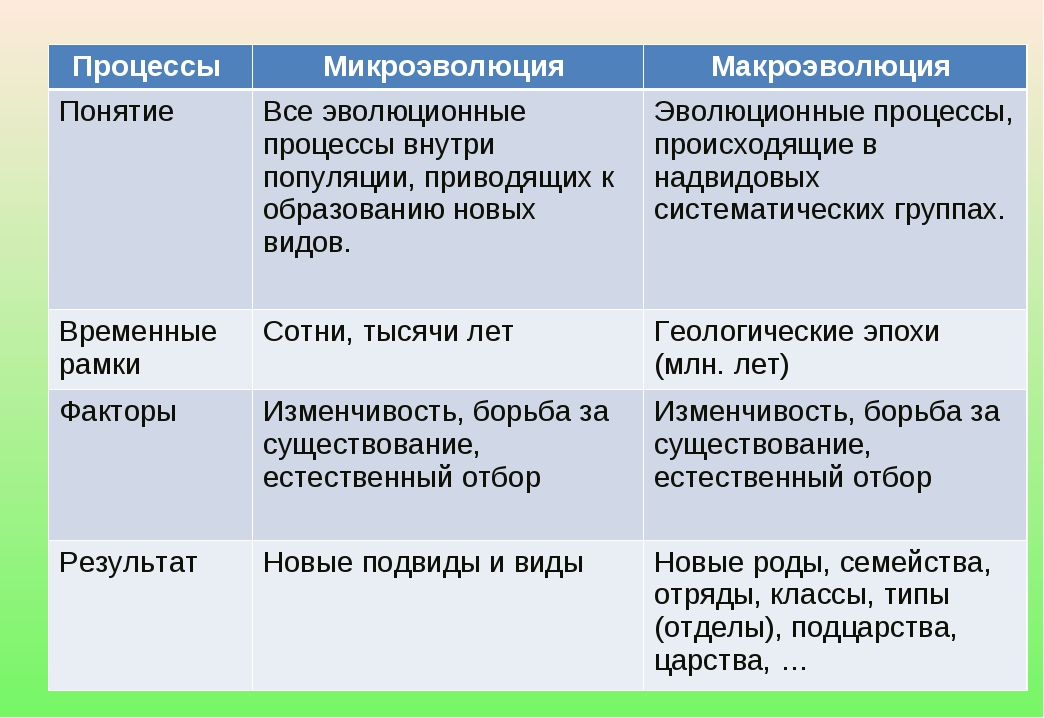 Процессы Микроэволюция Макроэволюция ПонятиеВсе эволюционные процессы внут...