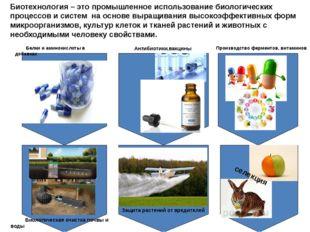 Производство ферментов, витаминов Антибиотики,вакцины Белки и аминокислоты в