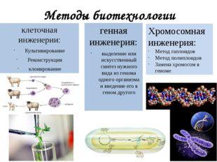 Методы биотехнологии клеточная инженерии: Культивирование Реконструкция клони