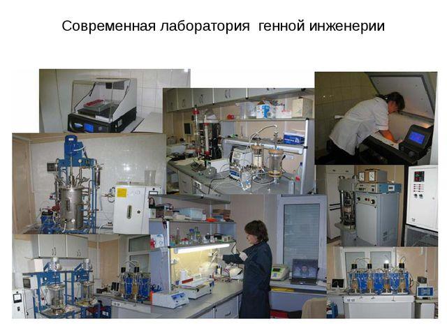 Современная лаборатория генной инженерии