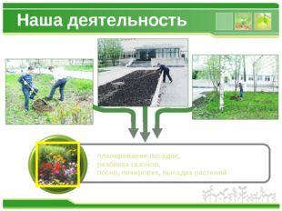 Наша деятельность планирование посадок, разбивка газонов, посев, пикировка, в