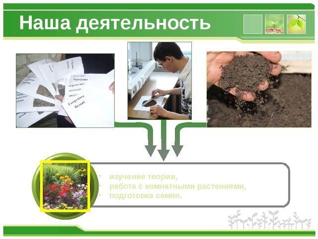 Наша деятельность изучение теории, работа с комнатными растениями, подготовка...