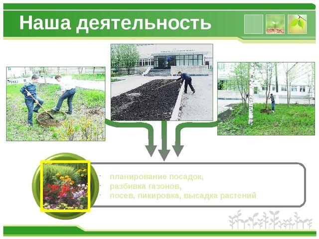 Наша деятельность планирование посадок, разбивка газонов, посев, пикировка, в...
