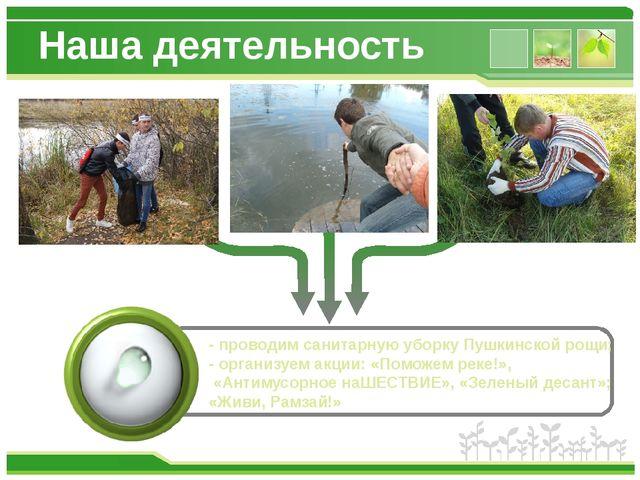 Наша деятельность - проводим санитарную уборку Пушкинской рощи; - организуем...