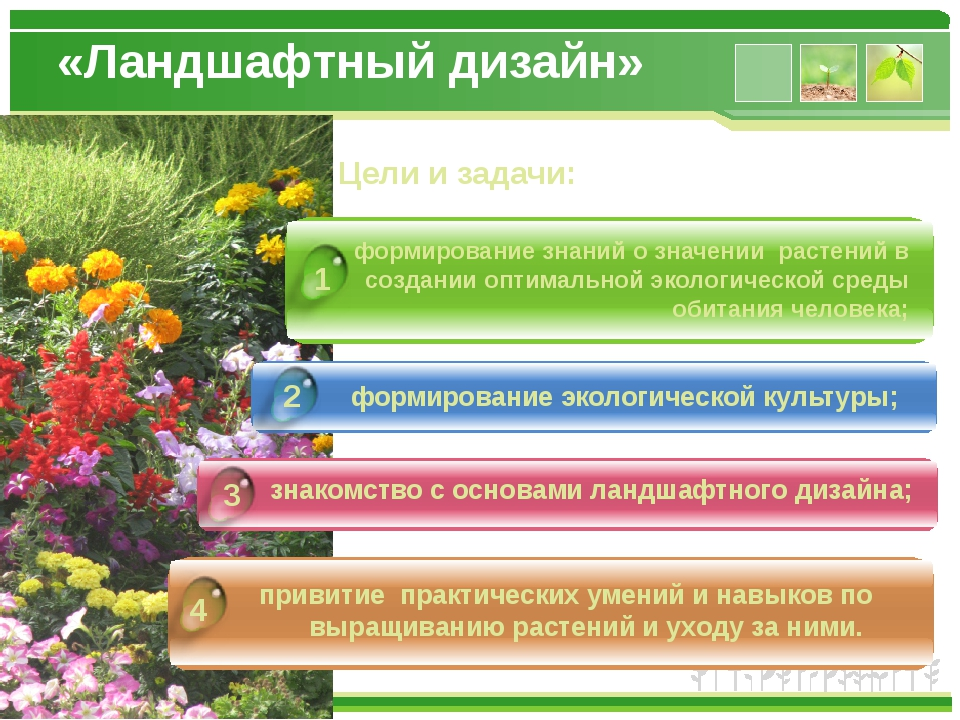 формирование знаний о значении растений в создании оптимальной экологической...