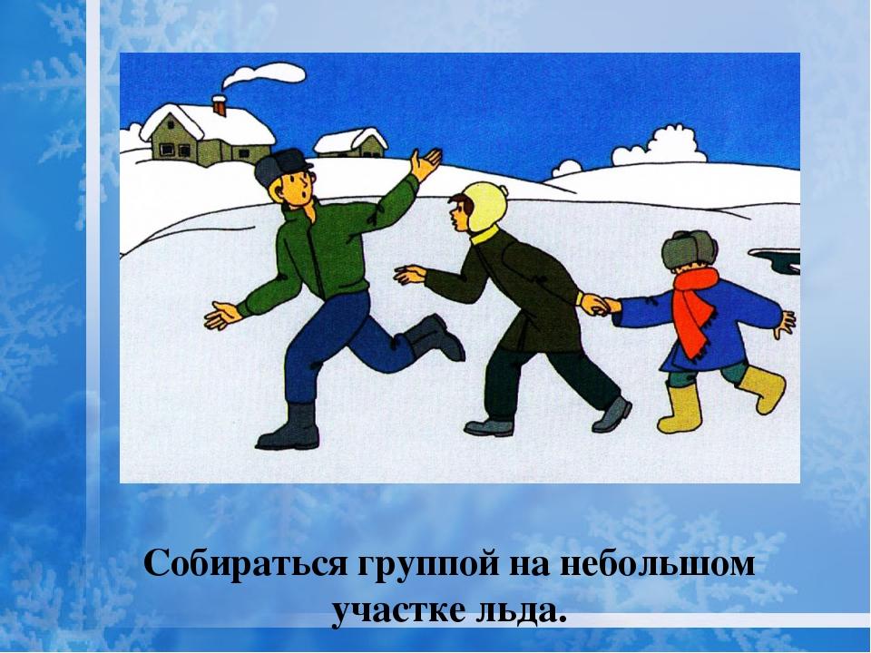 Собираться группой на небольшом участке льда.