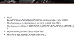 http://bagazhznaniy.ru/obrazovanie/stroenie-nefrona-obrazovanie-mochi http:/