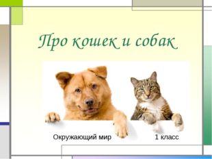 Про кошек и собак Окружающий мир 1 класс