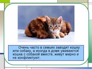 Очень часто в семьях заводят кошку или собаку, а иногда в доме уживаются ко