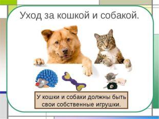 Уход за кошкой и собакой. У кошки и собаки должны быть свои собственные игруш