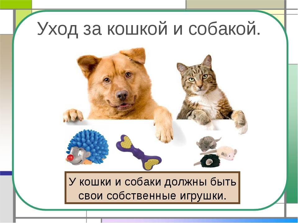 Уход за кошкой и собакой. У кошки и собаки должны быть свои собственные игруш...