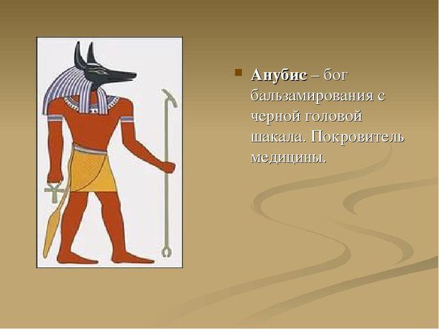 Анубис – бог бальзамирования с черной головой шакала. Покровитель медицины.