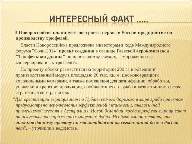 В Новороссийске планируют построить первое в России предприятие по производс...